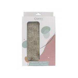 Cartel Paris Gant de Crin - Boîte 1 gant - Publicité