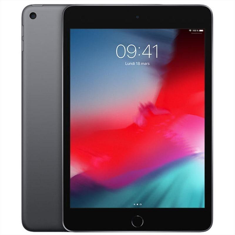 Apple iPad Mini 5 (2019) Wifi + Cellular 64 Go Gris Sidéral