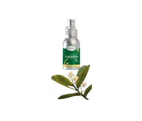 Le Comptoir Aroma Huile Végétale Bio Calophylle Visage & Corps 50ml