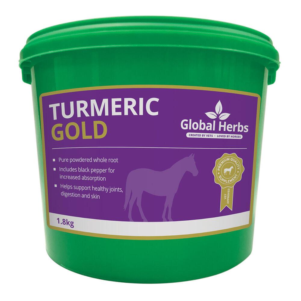 Globalherbs Complément alimentaire de soin Curcuma longa Global Herbs Turmeric Gold 1,8 kg