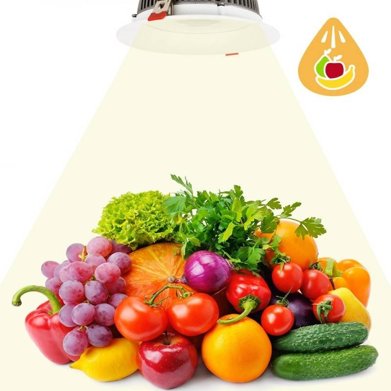 Barcelona LED Spot encastrable LED 30W spécial fruits et légumes - Barcelona LED