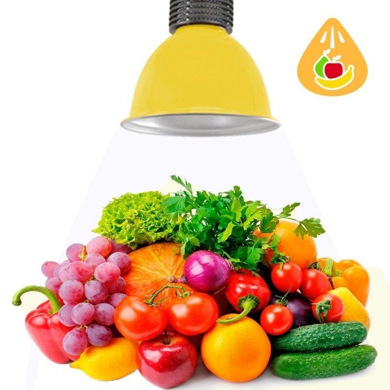 Barcelona LED Cloche LED 30W spécial fruits et légumes - Barcelona LED
