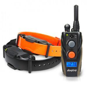 Dogtra Collier supplémentaire sangle orange Dogtra Maxi 1210 NCP pour chien - Publicité