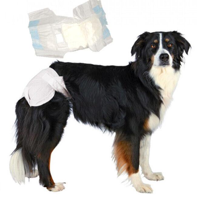 Trixie Couches culottes jetables blanches pour chienne T2 - Lot de 6 paquets de 12