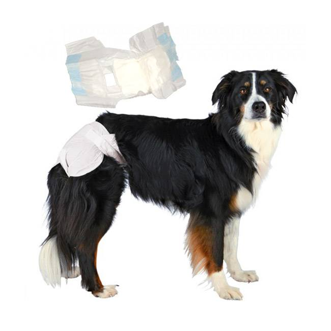 Trixie Couches culottes jetables blanches pour chienne T4 - Lot de 6 paquets de 12