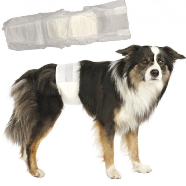 Trixie Couche incontinence jetable pour fuite urinaire du chien mâle L-XL (paquet de 12 couches)