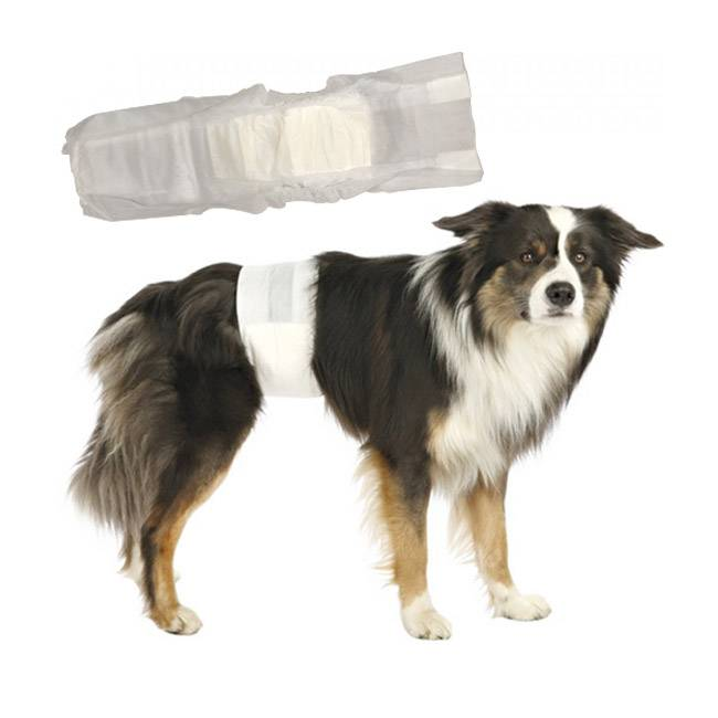 Trixie Couche incontinence jetable pour fuite urinaire du chien mâle S-M (paquet de 12 couches)