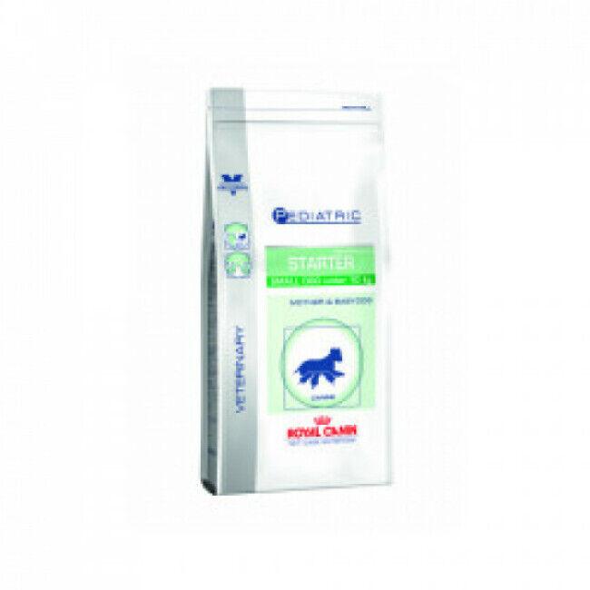 Royal Canin Croquettes pour chien de petite race Veterinary Care Pediatric Starter Royal Canin Sac 1,5 kg