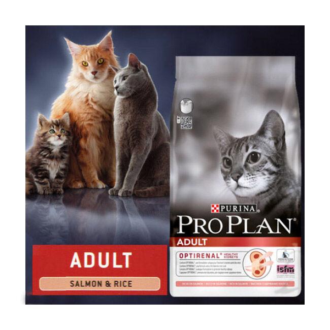 Proplan Croquettes Pro Plan pour chat adulte Original Adult au saumon sac 10 kg