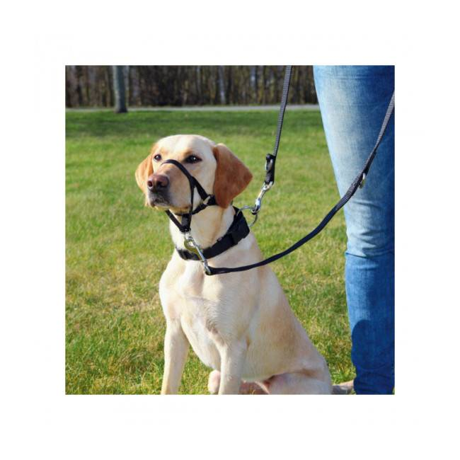 Trixie Harnais de dressage pour chien Top Trainer Trixie noir Taille L Longueur 31 cm