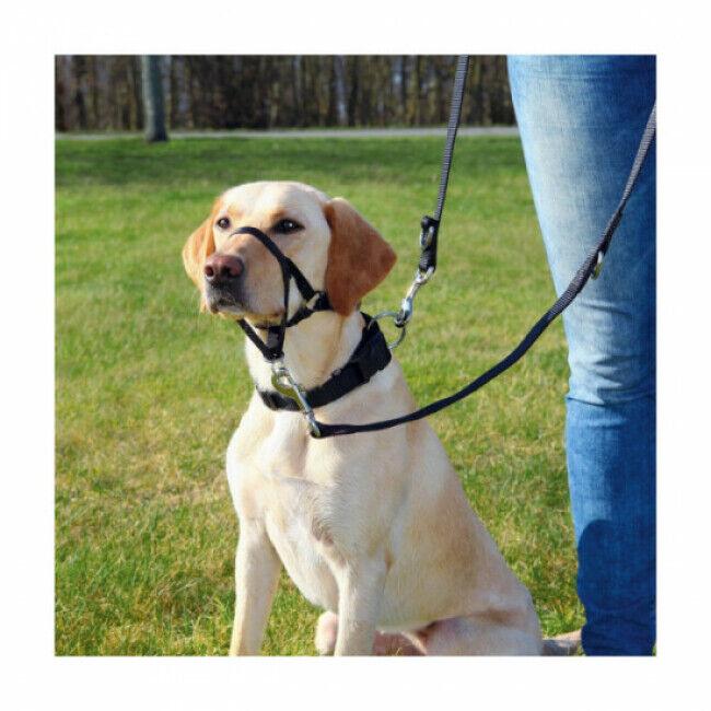 Trixie Harnais de dressage pour chien Top Trainer Trixie noir Taille L-XL Longueur 37 cm