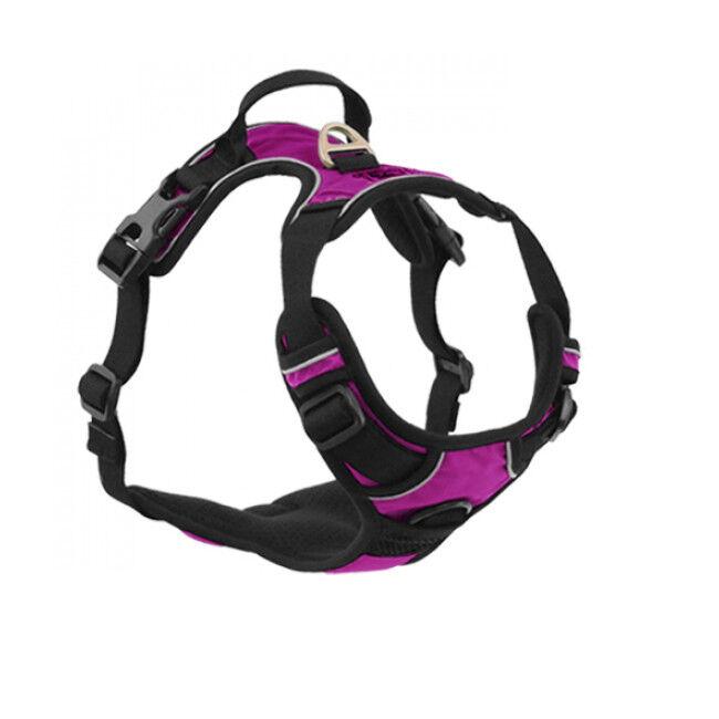 kn'1® harnais multifonction kn'1 active drive pour chien t2 violet