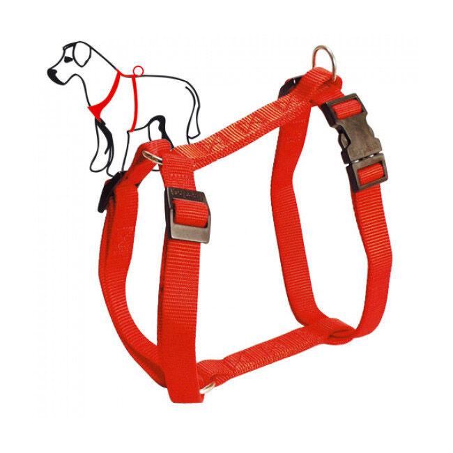 ferplast harnais sport promenade pour chien t3 rouge