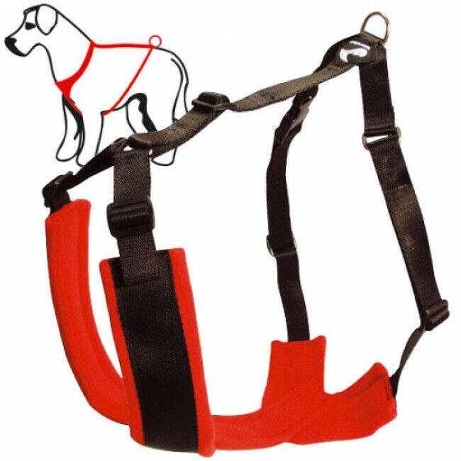 kn'1® harnais réglable th i-back kn'1® t1 chien 15 à 25 kg