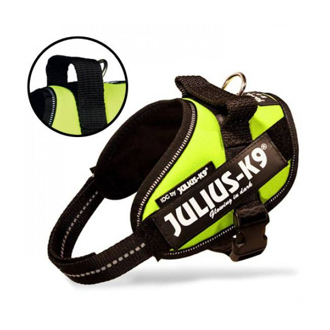 julius-k9 harnais julius-k9 idc pour chien power baby 2 jaune