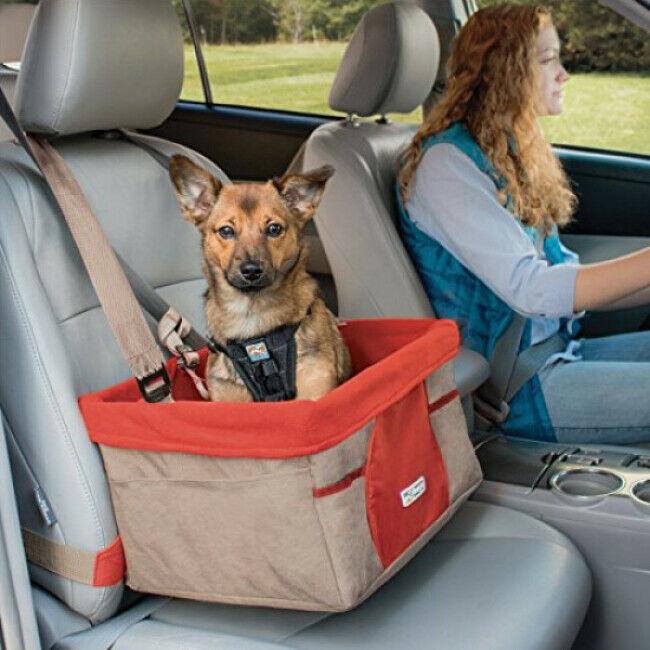 Kurgo Panier chien pour voiture Booster Seat rouge