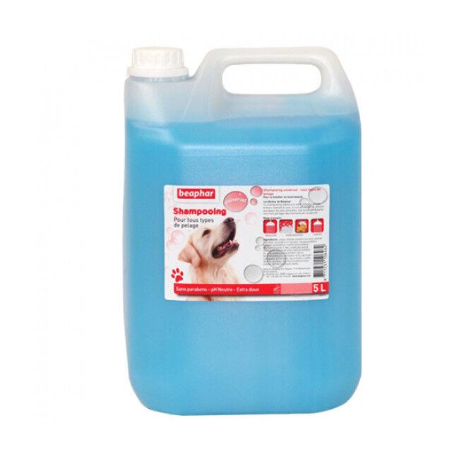 Beaphar Shampoing revitalisant Beaphar pour chien et chat 5 litres (DLUO 6 mois) (DLUO 6 mois)