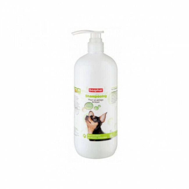 Beaphar Shampoing à l'huile de Macadamia pour éclat pelage du chien Beaphar flacon de 1 litre