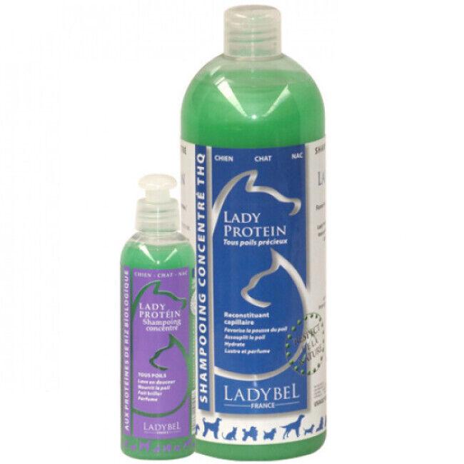 Ladybel Shampooing Ladybel aux protéines pour fourrure précieuse de chien, chat et NAC Lady Proteine 1 L
