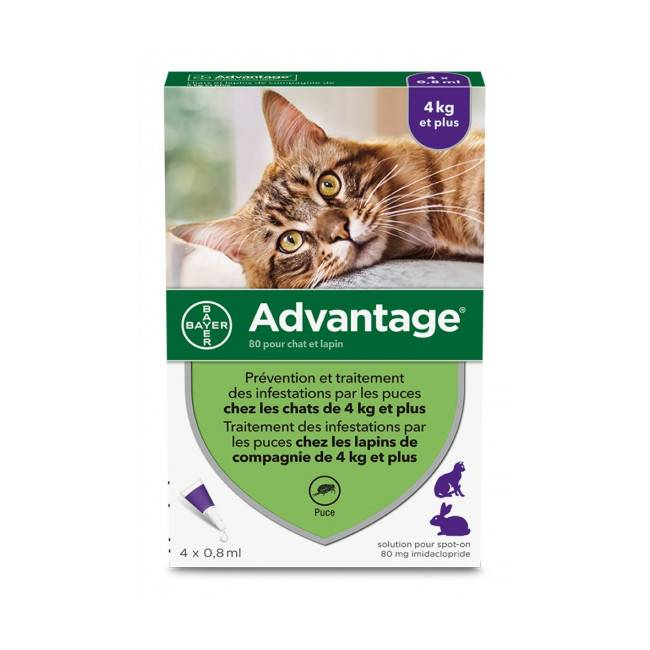 Advantage 80 Anti-puces pour chats  4 kg Boîte 4 Pipettes