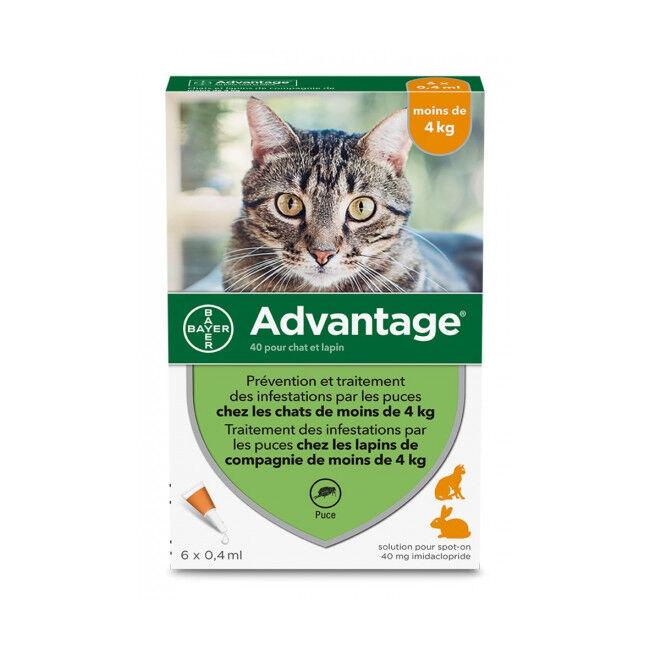 Advantage 40 Anti-puces pour chats