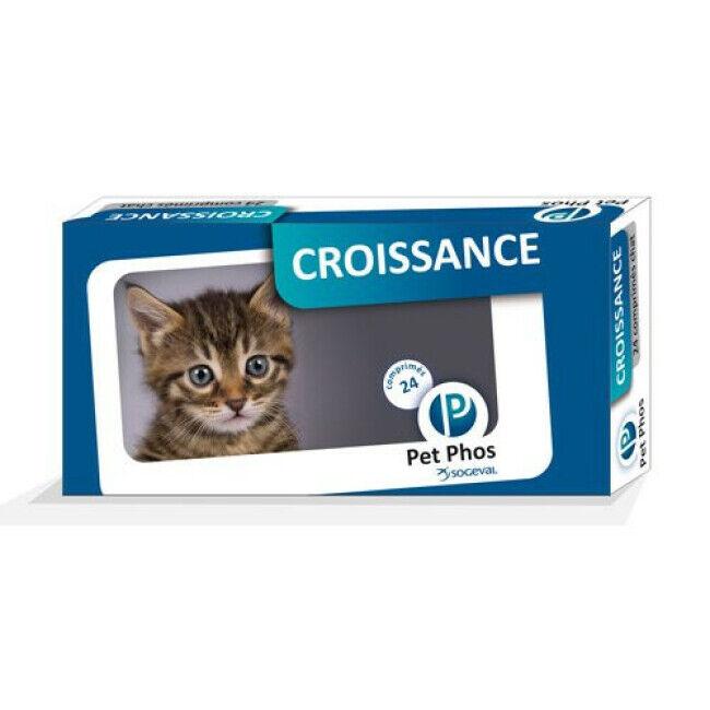 Ceva Pet-Phos Compléments alimentaires Croissance pour chats Boîte de 24 Comprimés 195 mg