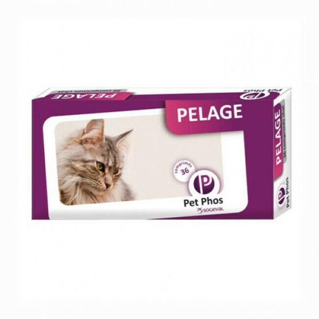 Ceva Pet-Phos Felin Special Compléments alimentaires pour pelage de chats