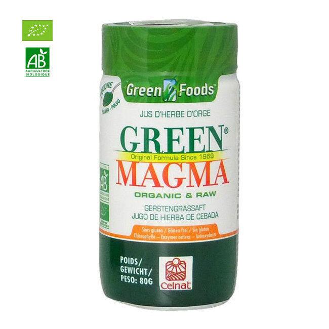 Green Magma Jus d'herbe d'orge bio en poudre 80g