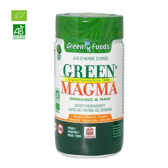 Green Magma Jus d'herbe d'orge bio 320 comprimés