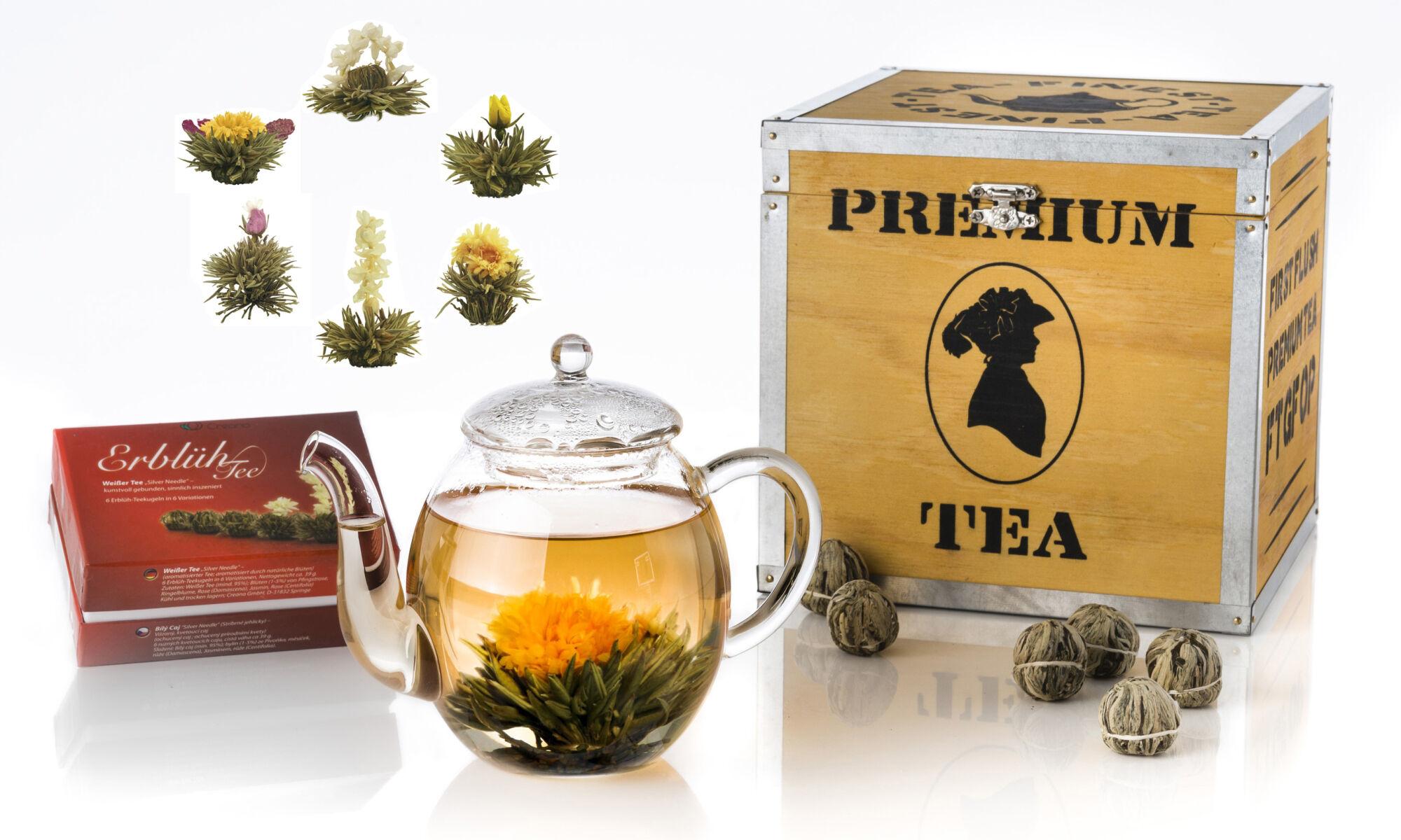 Coffret cadeau thé blanc en bois avec une sélection de six fleurs de thé blanches et une théière en verre de 500 ml