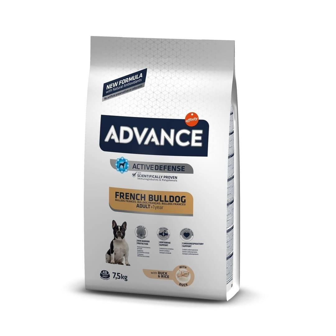 Advance Affinity Advance Chien Race Bulldog