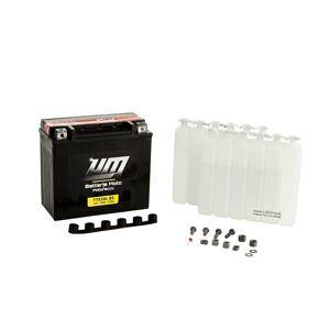 UM Batterie moto & scooter YTX20L-BS - Publicité