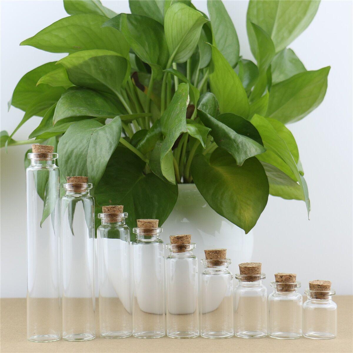 AliExpress Mini bouteille en verre, 50 pièces, bocaux de bricolage, messages, décoration en liège, petits