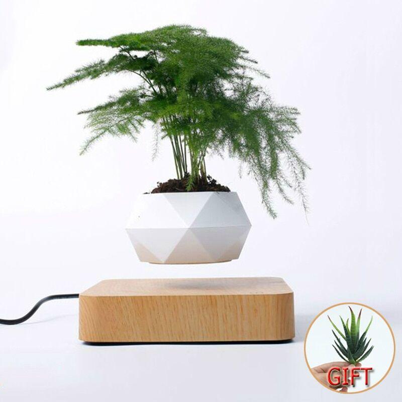 AliExpress Pot à bonsaï à lévitation en l'air et rotation magnétique, bac à plantes, jardinière, fleurs en