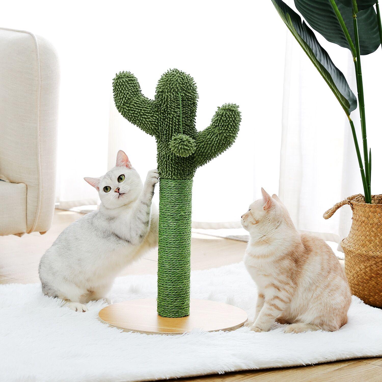 AliExpress Poste à gratter Cactus avec corde en Sisal, jouets pour chats jeunes et adultes, cadre d'escalade