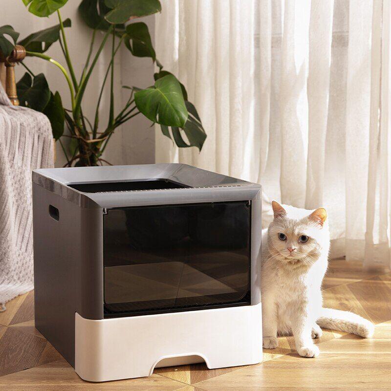 AliExpress Bac à litière avec pelle pour chat, grand espace, anti-éclaboussures, chaton, bac à sable, 3