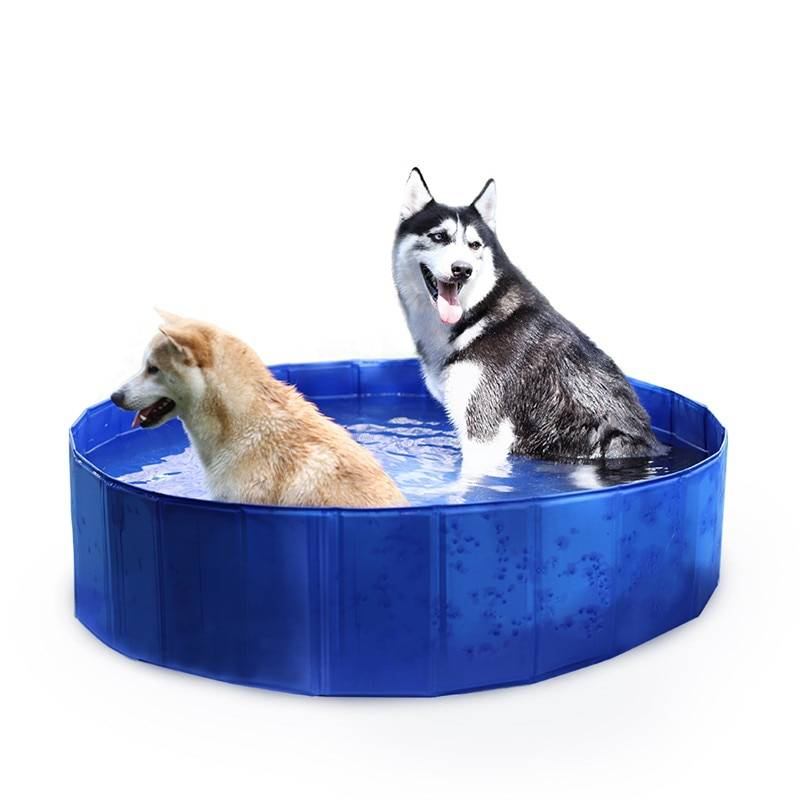 AliExpress Piscine ronde pliable pour animaux de compagnie, livraison gratuite, maison pour chiens, lit de