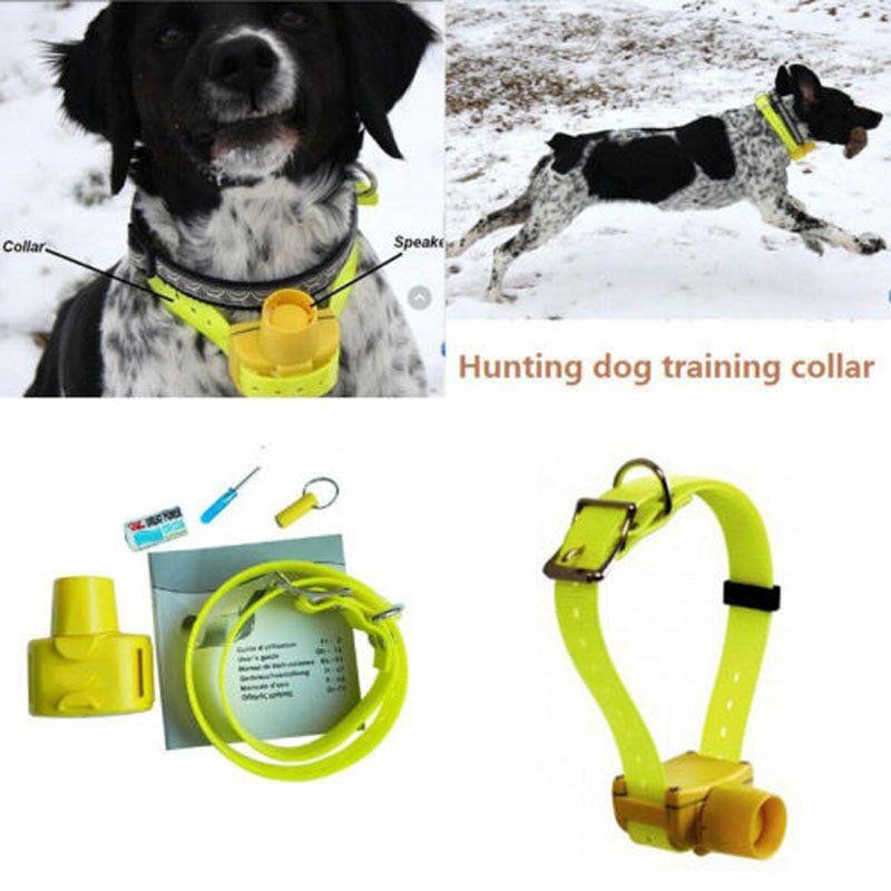 AliExpress Collier de chasse étanche pour chien, 8 sons sonores intégrés, collier d'entraînement pour animaux
