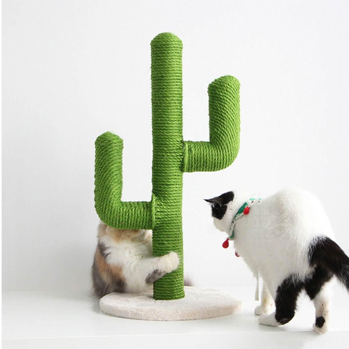 AliExpress Arbre à gratter en forme de Cactus pour chat, jouets pour animaux de compagnie, poteau pour chats,
