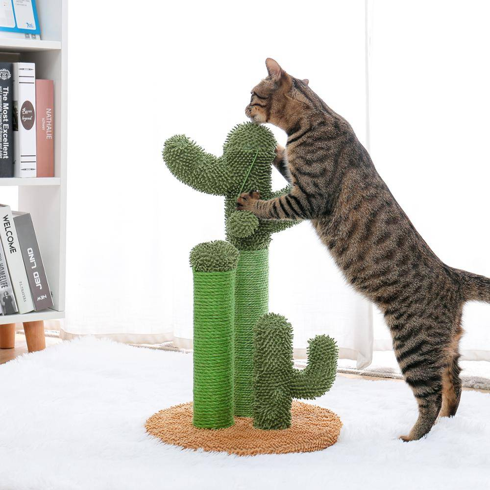 AliExpress Jouets d'arbre de chat d'animal de compagnie d'arbre de Cactus de chat de livraison directe avec des