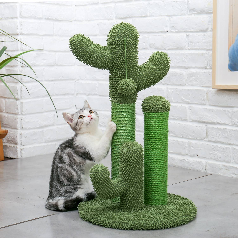 AliExpress Arbre à chat Cactus mignon, jouets avec boule, poste à gratter pour chat chaton grimpant, jouets de