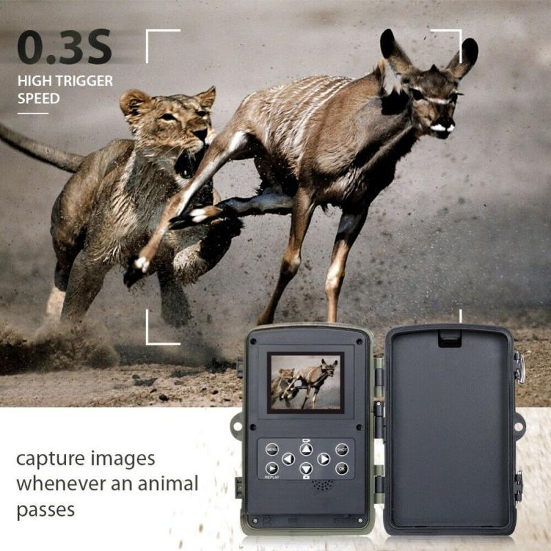 AliExpress Caméra de chasse et de suivi des sentiers, étanche IP65, 16mp 32 go/64 go, pièges photos, temps de