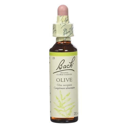 Fleur de Bach Olive - Fleurs de Bach n°23