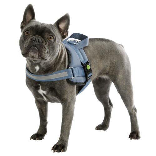 KERBL Harnais pour chien - Taille: 57 - 77 cm