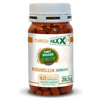 Curcumaxx Boswellia Serata Bio 60 capsules - Curcumaxx