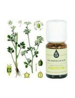 huile essentielle thym bornéol