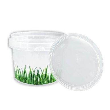 Fdstore Herbes 120 pour l'alimentation - paquet de 1200 pcs (bocal + couvercle) Fdstore ERBETTO120
