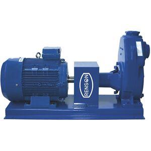 Renson Pompe engrais 230V sur bati - 2,2kW AA3BELM Renson 103635 - Publicité
