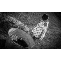 Joffrey Basquin Photographie shooting photo d'1h en extérieur avec 5 tirages pour 1 à 8 personnes avec Joffrey Basquin Photographie <br /><b>15 EUR</b> Groupon FR