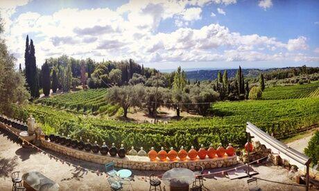 Vignoble Des Hautes Collines De La Cote D'azur Visite guidée 45 min et dégustation 3 vins bio pour 1 ou 2 personnes au Vignoble Des Hautes Collines De La Cote D'azur